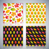 Four Seamless Patterns Set with Autumn Leaves Royalty Free Stock Images