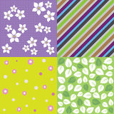 Four seamless spring background patterns Royalty Free Stock Photos