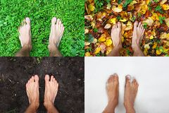 Four season bare man feet stands summer on green grass, winter snow, autumn leaves, spring ground, top view, copy space. Four season - bare man feet stands on royalty free stock photography