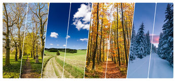 Four season collage from shots with roads in landscape Royalty Free Stock Photo