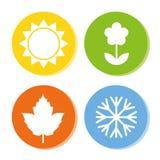 Four season icons summer spring autumn winter vector illustration