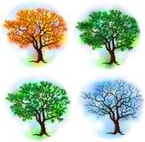 Four season trees Stock Photo