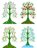 Four Seasonal tree Royalty Free Stock Photo