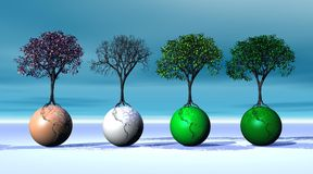 Four seasonal trees on four earth Royalty Free Stock Photography