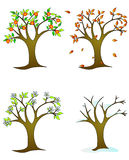 Four seasons – colorfull trees royalty free stock photography