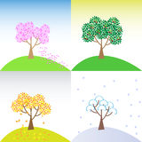 Four seasons. Cherry tree on the land in the different seasons Stock Image
