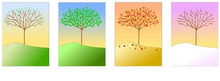 Four Seasons. A tree shown in Spring, Summer, Autumn and Winter Royalty Free Stock Image