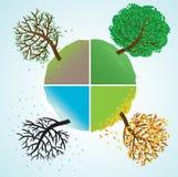Four seasons. Change of seasons of year. Vector illustration Stock Photos