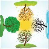 Four seasons. Change of seasons of year. Vector illustration Stock Photography