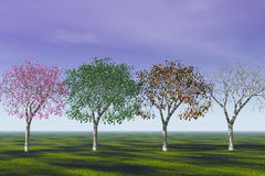 Four Seasons . Royalty Free Stock Photo