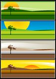 Four Seasons. Illustration representing our four seasons, Summer, Autumn, Winter, Spring Royalty Free Stock Photos