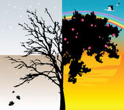 Four seasons. Vector illustration of a tree - four seasons Stock Photography