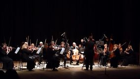 Four seasons Chamber Orchestra stock video