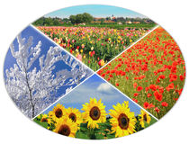 Four seasons circle IX Stock Photography