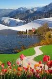 Four seasons collage bavarian landscape Stock Images