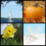 Four Seasons. A composite image of the seasons during the year Stock Photography