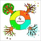 Four seasons for design of a calendar. Trees in four seasons for design of a calendar Stock Image