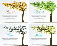 Four Seasons Fantasy Tree Royalty Free Stock Photo