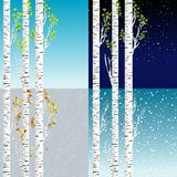 Four seasons illustration with birch tree stock illustration