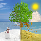 Four Seasons In One Royalty Free Stock Photos