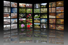 Four seasons media room stock images