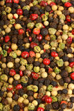 Four seasons pepper grains background Royalty Free Stock Image