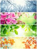 Four seasons. A pictures that shows four different pictures representing the four seasons. Spring, summer, autumn and winter stock photo