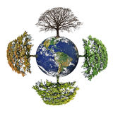 Four Seasons of Planet Earth stock illustration