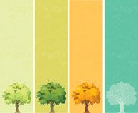 Four seasons - spring, summer, autumn, winter Royalty Free Stock Photos