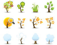 Four Seasons Tree Icons Set Stock Photo