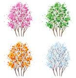 Four seasons tree. Set of four seasons tree Royalty Free Stock Image