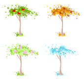 Four seasons tree Royalty Free Stock Photography