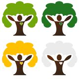 Four seasons tree Stock Photo