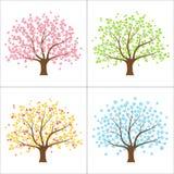 Four seasons tree Royalty Free Stock Image