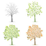 Four seasons of tree vector Royalty Free Stock Photography