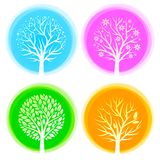 Four seasons trees vector illustration