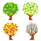 four seasons trees Royalty Free Stock Photography