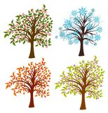 Four seasons trees,  Royalty Free Stock Image