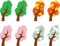 Four seasons trees. Illustration of four seasons trees isolated on white background Stock Photo