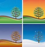 Four seasons - trees. In spring, summer, autumn and winter Stock Photo