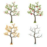 Four seasons trees art Royalty Free Stock Image