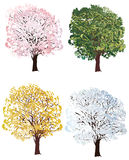 Four seasons trees collection Stock Image