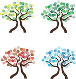 Four seasons trees Stock Photography