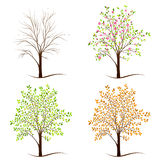 Four seasons trees vector Stock Image