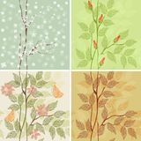 Four seasons - winter, spring, summer, autumn in v Stock Photo