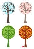 Four seasons. Winter, Spring, Summer and Autumn. Four various types of trees isolated on white background Royalty Free Stock Image