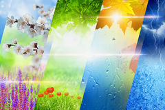 Four seasons of year collage Stock Photography
