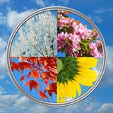 Four seasons of the year on sky background stock images