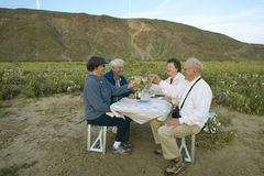 Four senior citizens drinking white wine Royalty Free Stock Photography