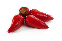 Four shiny chilli peppers Stock Photos